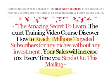 reach 1,000,000 targeted subscribers without investment