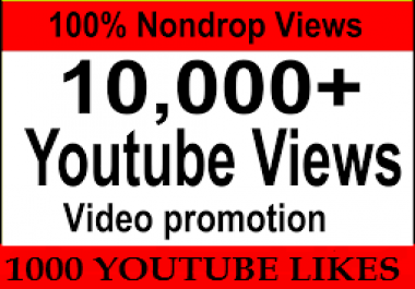 Provide 10,000 you tube views 1000+ real and active YouTube Likes your account.