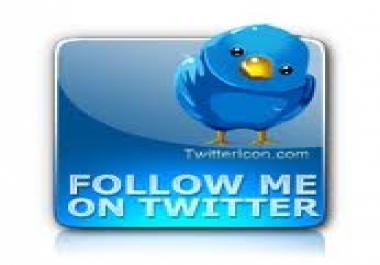 Get You Real & Permanent 1,000+ Twitter Followers only