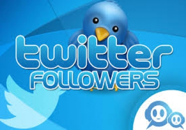 Best 30 000+ Twitter Followers Will be Delivered to Your Twitter Account Just