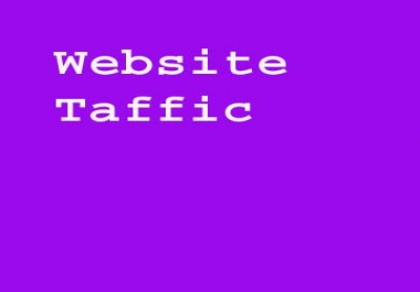 Get Fastest 1,000+ High Quality website trffic  within 24hrs