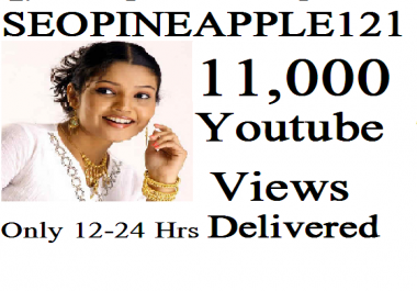 Get 11,000 Or 11K High Quality Vieews Fully Safe Instant Start Lifetime Guaranteed