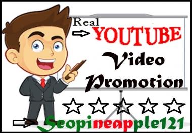 Organic Seo Youtube Video Marketing Promotion Via Fully Safe