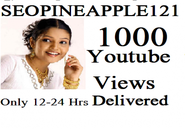 Get 1,000 High Quality Vieews Fully Safe Instant Start Lifetime Guaranteed