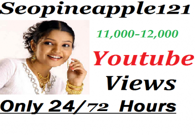 11,000-12,000 High Quality Non Drop Youtube Views Within 24-72 Hours