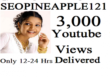 2,000-3000 High Quality Views Fully Safe Instant Start Lifetime Guaranteed