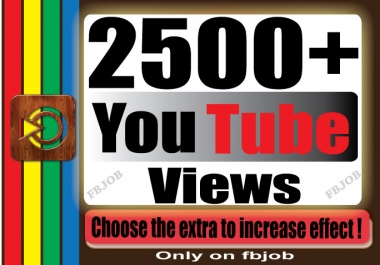 Fast 2000-2500+ Non Drop High Quality Adsense Safe and Life Time Guaranty Views for Your Video
