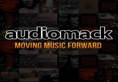 provide 200 Real Audiomack followers