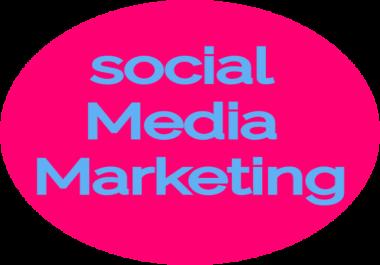 Get High Quality ORGANIC 1200  social media  follower