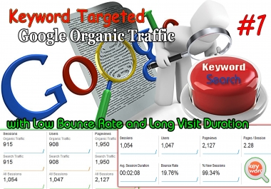 Unlimited Keyword Targeted Google Organic Traffic with Low Bounce Rate
