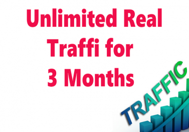 Unlimited Real Human traffic for 3 months
