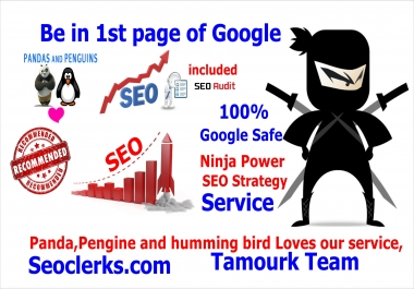 Ninja Power SEO Pack ,Hv2, 100 parcent Google Penda Penguin Humming bird Safe and Real Results,
