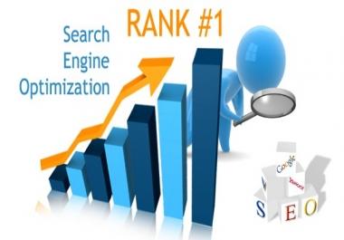 I Will Do 30 Days Seo Backlinks Service Rank FIRST on Google