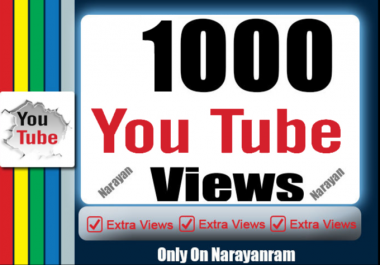 One Thousand High Quality YouTube Views