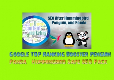 Get Google TOP Ranking Booster Penguin, Panda & Hummingbird Safe SEO Pack