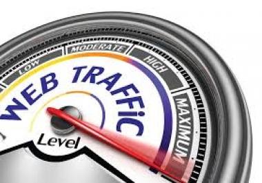 I will drive 300000 USA Website Traffic