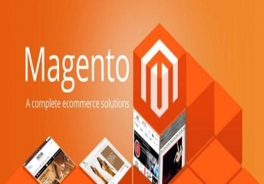 I will build a Magento store or do maintenance