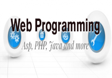 I will works as your Web Programming Assistant