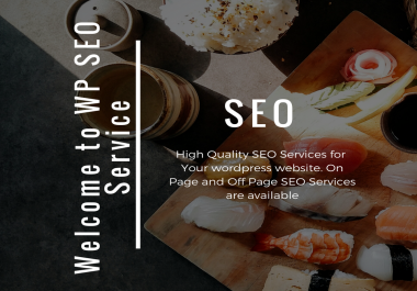 I will do On Page SEO Optimization for WP Website