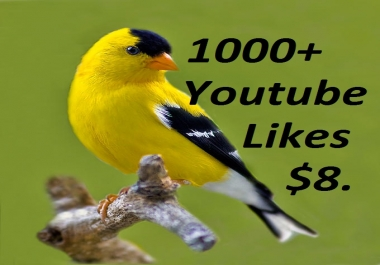 1000+ YouTube likes give you Super fast or 200+ Auto Comment or 200+ Subscribers