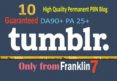 I Will Do 10 Permanent Aged Tumblr Pbn Backlinks With Guaranteed Pa 25+ and DA 90+
