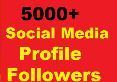Social Profile Followers High Quality