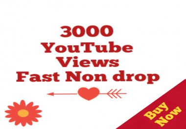 Instant 2,000 To 3000 Youtube Vie ws High Quality speed within 12/24 hours