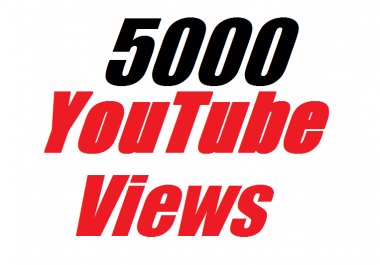 Instant provide 5000 To 6000 YouTube Views In Your Video12-24 house completed