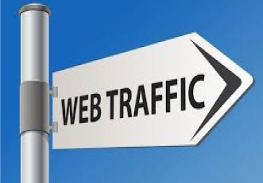 I will drive Unlimited real Human Traffic to your website or blog for  30 days