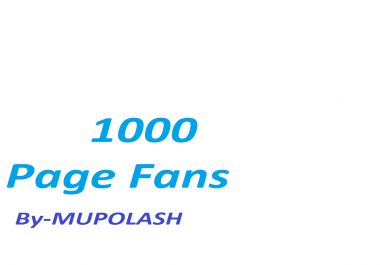 Instantly 1000+ social Likes/Fans on your Page