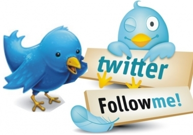 i will give instant 1000 twitter folIowers your account