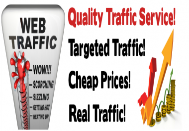 SEO BOMB 6000+ daily visitors for 2 month 360,000+ total visitors,Keyword targeted,Organic traffic