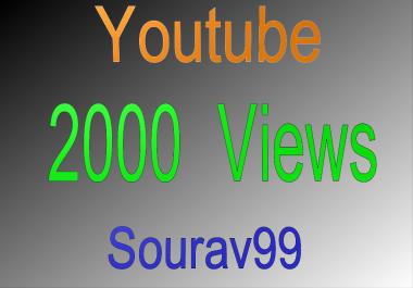 Youtube 2000 Video Views