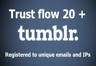 GET Niche Specific Tumblr Blog DA 99 PA 28+ TF 20+ Your OWN PBN