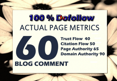 1st Time On Seoclerks 60 Backlinks Actual Page Metrics Dofollow Blog Comments