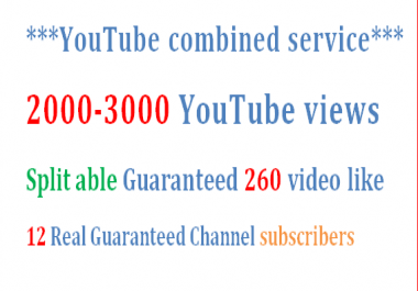 1000-1200 YouTube views + 100 HQ video like & 10 subscribers