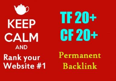 Create 10 permanent PBN posts on TF 20+ CF 20+ website