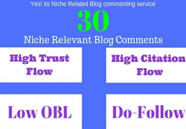 Do 30 Niche relevant Blog Comments High TF