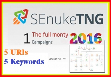 Create​ Senuke TNG the Full Monty to create massive backlink diversity