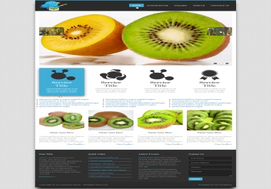 Fully Pixel Perfect and Responsive conversion from psd to html will be done within 48 hours