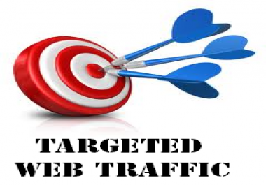 Unlimited USA Website Visitor Traffic by Social Media Marketing