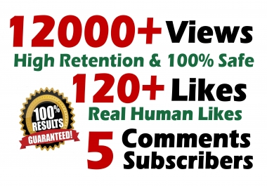 12000 HR views + 120 Likes + 5 Real comments Youtube video SeoPromotion