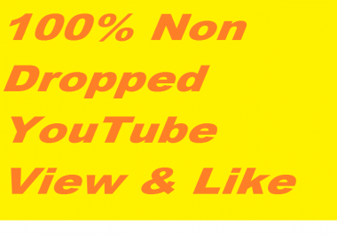 100,000-110,000+ Active & Non Dropped YouTube Views And 200+ Guaranteed And Non Dropped Youtube likes