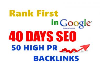 Rank you 1st in google - 50 pr10 niche backlinks - 40days seo