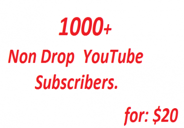 get 1000 Non Drop YouTube Subscribers OR 1000 YouTube Auto Commnets