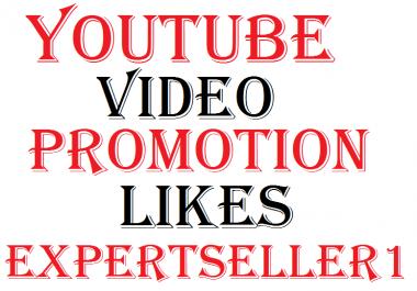 Video Promotion Likes via real user Social Media Marketing