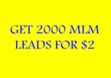 2000 US MLM leads for your mlm/network marketing business