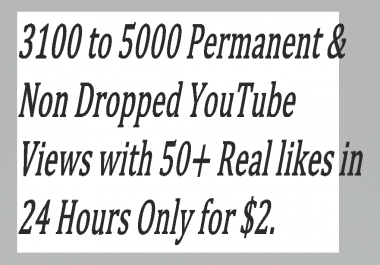 Super Fast 2000 - 3000 Guaranteed & Non Dropped You,tube Vie,ws with 50+ Real Lik,es