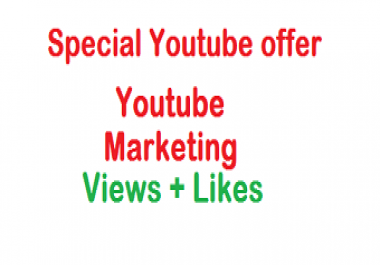 Add 5000 Youtube views+20 Likes on your youtube video