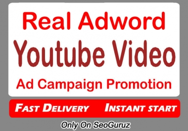 YouTube Video Promotion Via Audience Campaign
